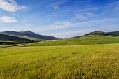 picture of siberia  - Fields and meadows in the low mountains. Clear sunny summer day. Khakassia. Summer 2014. Siberia. ** Note: Soft Focus at 100%, best at smaller sizes - JPG