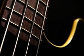 picture of fret  - Detail of the fret board of a bass guitar on a dark background. ** Note: Shallow depth of field - JPG