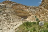 pic of twisty  - Gorge with steep walls - JPG