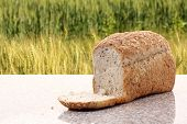 pic of whole-wheat  - whole wheat bread with barley field background - JPG