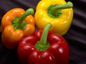 pic of yellow-pepper  - fresh red orange and yellow bell peppers in dark back - JPG