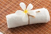 picture of frangipani  - Set of frangipani flower with towel on bamboo mat - JPG