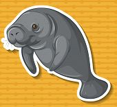 picture of sea cow  - Close up sea cow swimming alone - JPG