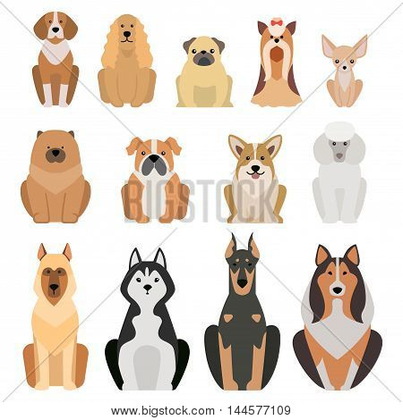 poster of Vector illustration of different dogs breed isolated on white background. Flat dogs breed vector icon illustration, flat dogs breed isolated vector. Dog breed flat silhouette