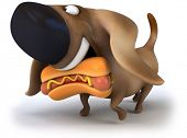 stock photo of hot dog  - Hot dog - JPG