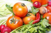Постер, плакат: Tomatoe петрушка капуста лук и другие овощи