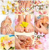 stock photo of massage therapy  - Female feet massage and flowers - JPG