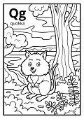 Coloring Book For Children, Colorless Alphabet. Letter Q, Quokka poster