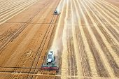 Combine Harvester Working On A Wheat Field. Combine Harvester Aerial View. poster