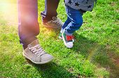 First Steps Concept - Foot Of Father And Son In Stylish Sneakers On The Background Of Green Grass. B poster
