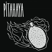 Isolate Ripe Pitaya Or Pitahaya As Chalk On Blackboard. Close Up Clipart In Chalkboard Style. Hand D poster