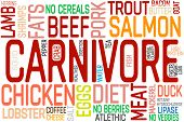 Carnivore Eat Meat Motivation Lettering. Carnivore Diet Word Constructor. poster