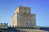 The Castle Of Henry Ii Also Known As Henry Ii Castle Or Castle Trastamara Is A Xiv Century Fortress  poster