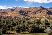 Oasis In The Dades Valley, Also Known As The Valley Of The Roses, Morocco poster