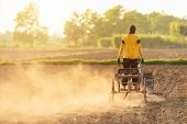 People Is Working In The Land And Driving Small Tractor To Prepare The Soil For Growth Tobacco Seaso poster