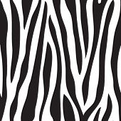 Animal print, zebra texture seamless background black and white colors