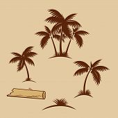 Tropical Palms - Monochrome Illustration With Silhouettes Of Coconut Palms. Flat Palm Tree Icon For  poster