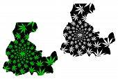 Segou Region (regions Of Mali, Republic Of Mali) Map Is Designed Cannabis Leaf Green And Black, Sego poster
