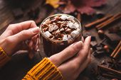 Cup Of Hot Chocolate With Marshmallows And Cinnnamon In Womans Hands. Comfort Food, Cozy Autumn Hot  poster