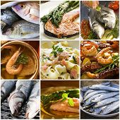 picture of healthy food  - sea food collage made from nine photographs - JPG