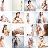 pic of silk lingerie  - Women in a different bridal lingerie and dresses - JPG
