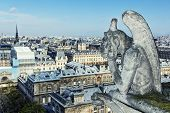 stock photo of gargoyles  - Paris wit Gargoyle architectural fragment in foreground - JPG
