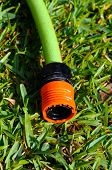 Hose connector on grass.