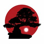 picture of bonsai  - black silhouette of a bonsai with a rising white moon on a red sun background - JPG