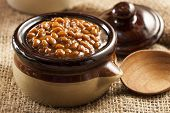 image of kidney beans  - Homemade Barbecue Baked Beans with pork in a bowl - JPG