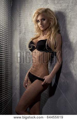 Young Sexy Woman In Black Lingerie poster