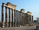 picture of cardo  - Pompey made Apamea  - JPG