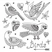 picture of chickadee  - Vector set birds and hearts - JPG