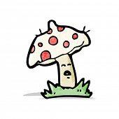 image of toadstools  - cartoon toadstool - JPG