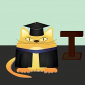 picture of tribunal  - Vector illustration of a red cat graduate and gown graduate - JPG