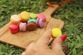 stock photo of picking tray  - Hand were picked colorful of macaron on a brown tray - JPG