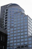 foto of adoration  - buildings adore the growth of the Seattle skyline  - JPG