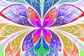stock photo of symmetrical  - Multicolored symmetrical fractal pattern as flower or butterfly in stained - JPG