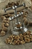 image of nutcracker  - nutcracker and pile of walnuts in shell in soft diffused light - JPG