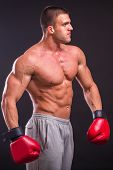 picture of boxing  - Muscular man with boxing gloves - JPG