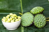stock photo of corbel  - fresh lotus seed on green banana leaf - JPG