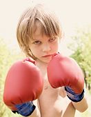 picture of pugilistic  - The boy in boxing gloves against a light background, close up portrait