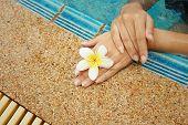 stock photo of plumeria flower  - Woman - JPG