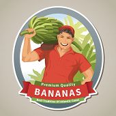 pic of cluster  - Label with farmer holding big banana cluster - JPG