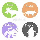 picture of color animal  - Color animals silhouettes labels in colorful circles - JPG