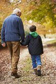 stock photo of grandfather  - Rear View Of Grandfather And Grandson Walking Along Path - JPG