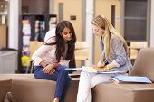 stock photo of mentoring  - Female College Student Working With Mentor - JPG