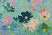 picture of cosmos flowers  - Cosmos flower on cement textured background made vintage - JPG