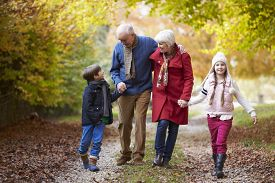 stock photo of fifties  - Grandparents With Grandchildren Walking Along Autumn Path - JPG
