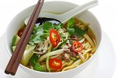 stock photo of malaysian food  - penang assam laksa - JPG