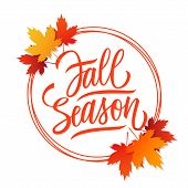 Fall Season Card Design With Bright Autumn Leaves, Circles And Hand Drawn Lettering. Autumn Seasonal poster